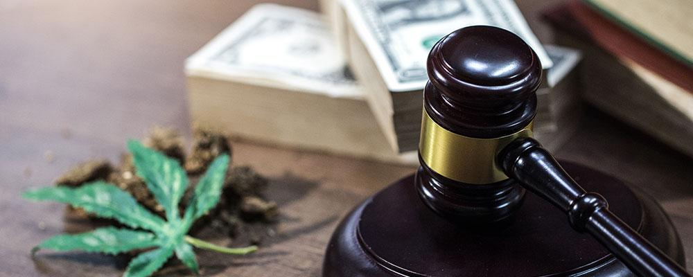 Elite Cannabis Law Attorney